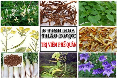 Bật mí 8 loại tinh hoa thảo dược được tương truyền trong dân gian