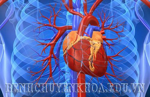 Hỏi đáp bệnh học – Thấp tim