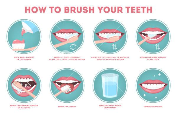 Câc bước đánh răng đúng cách
