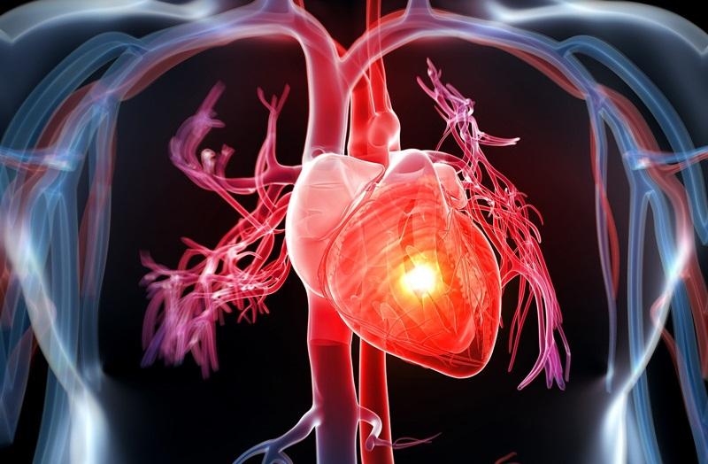 Một số bệnh thường gặp ở tim